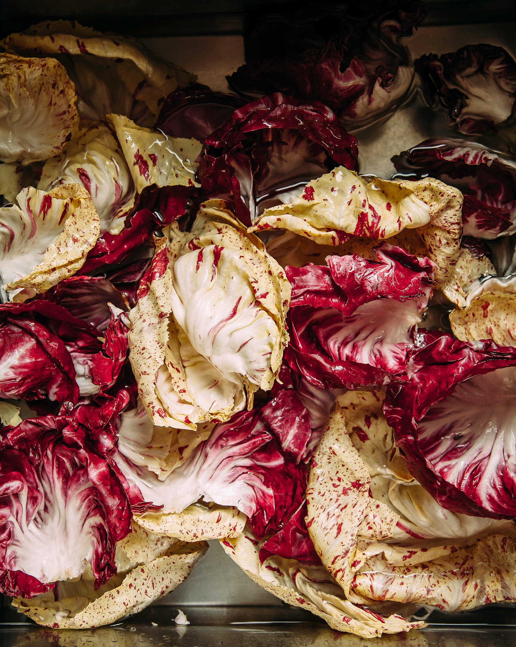 An overhead shot of different coloured radicchio leaves getting washed in a stainless sink.