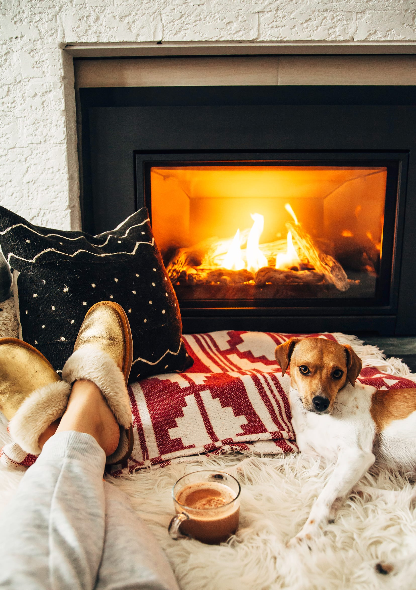 Image shows a cute dog lounging by a fireplace on some blankets and pillows. A mug of hot chocolate is seen nearby.
