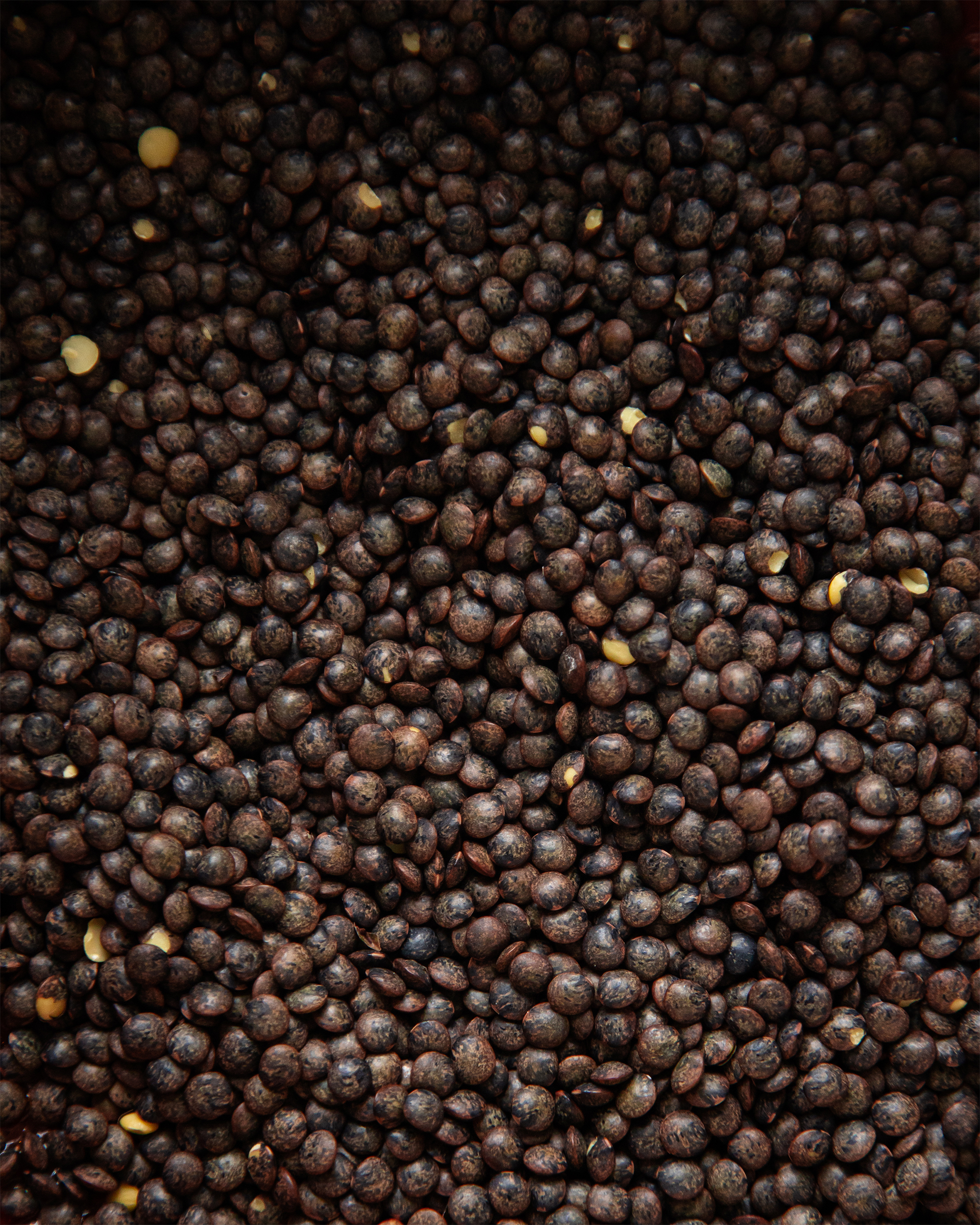 Image is a closeup of some dry French lentils in low lighting.