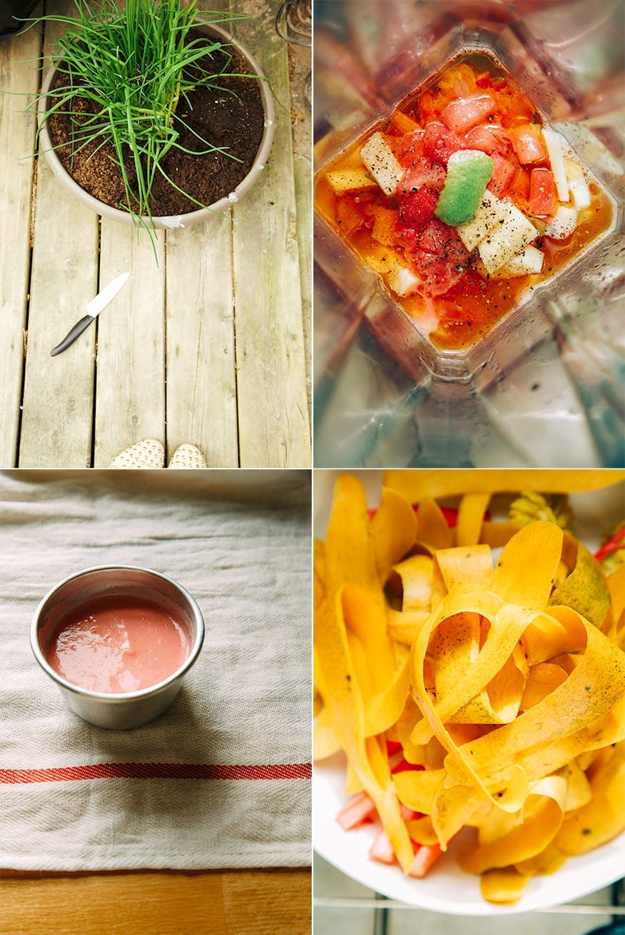 chives, rhubarb ginger dressing, mango peels // the first mess