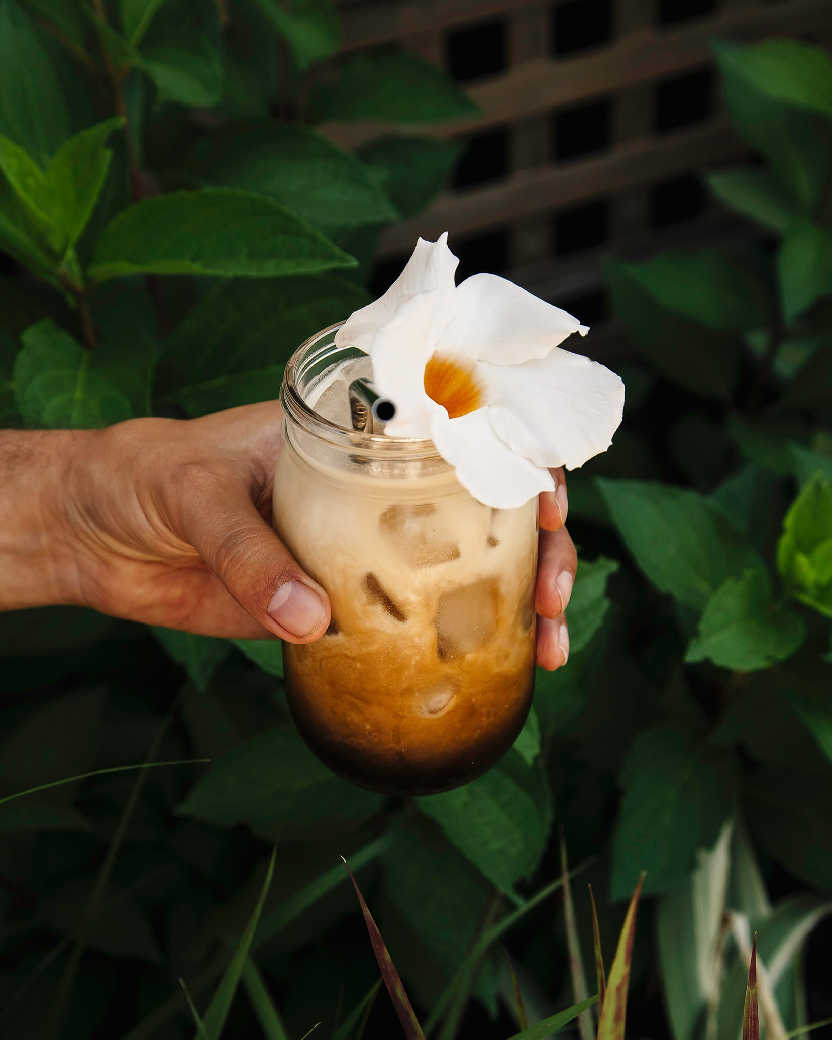 Double coconut cold brew coffee