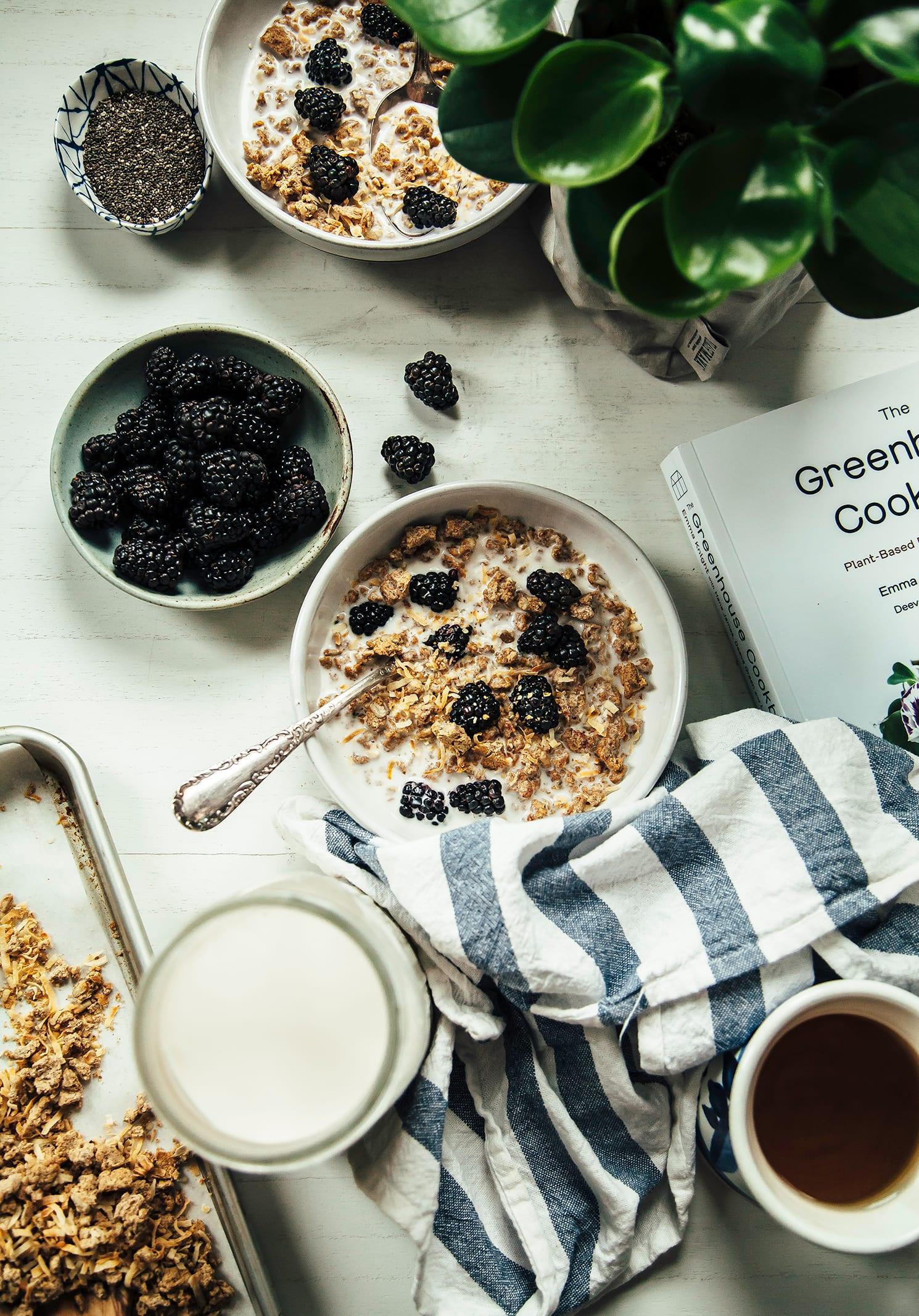 An overhead shot of granola in a bowl with some blackberries and milk poured over top.