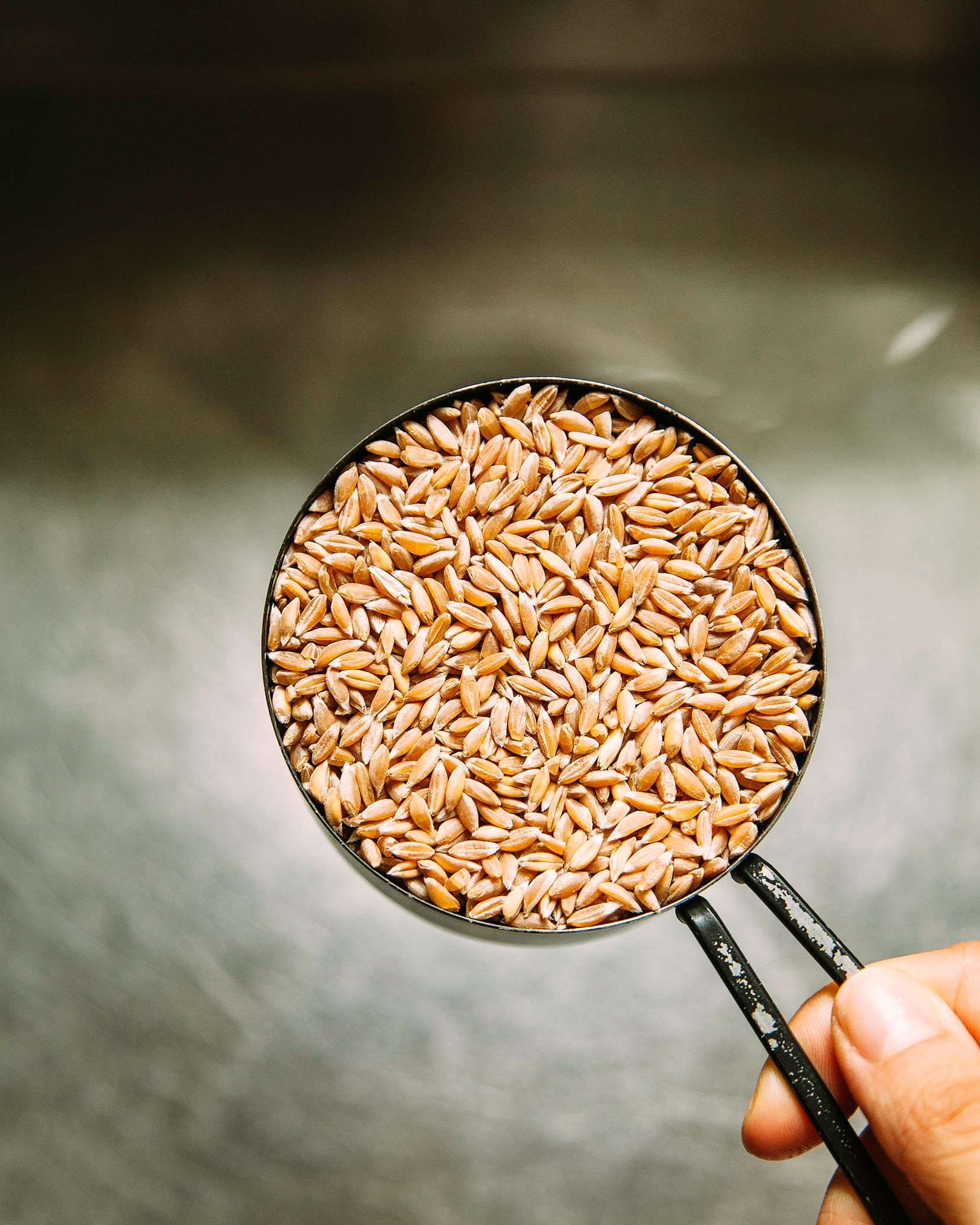 A hand is holding a measuring cup of dry farro.