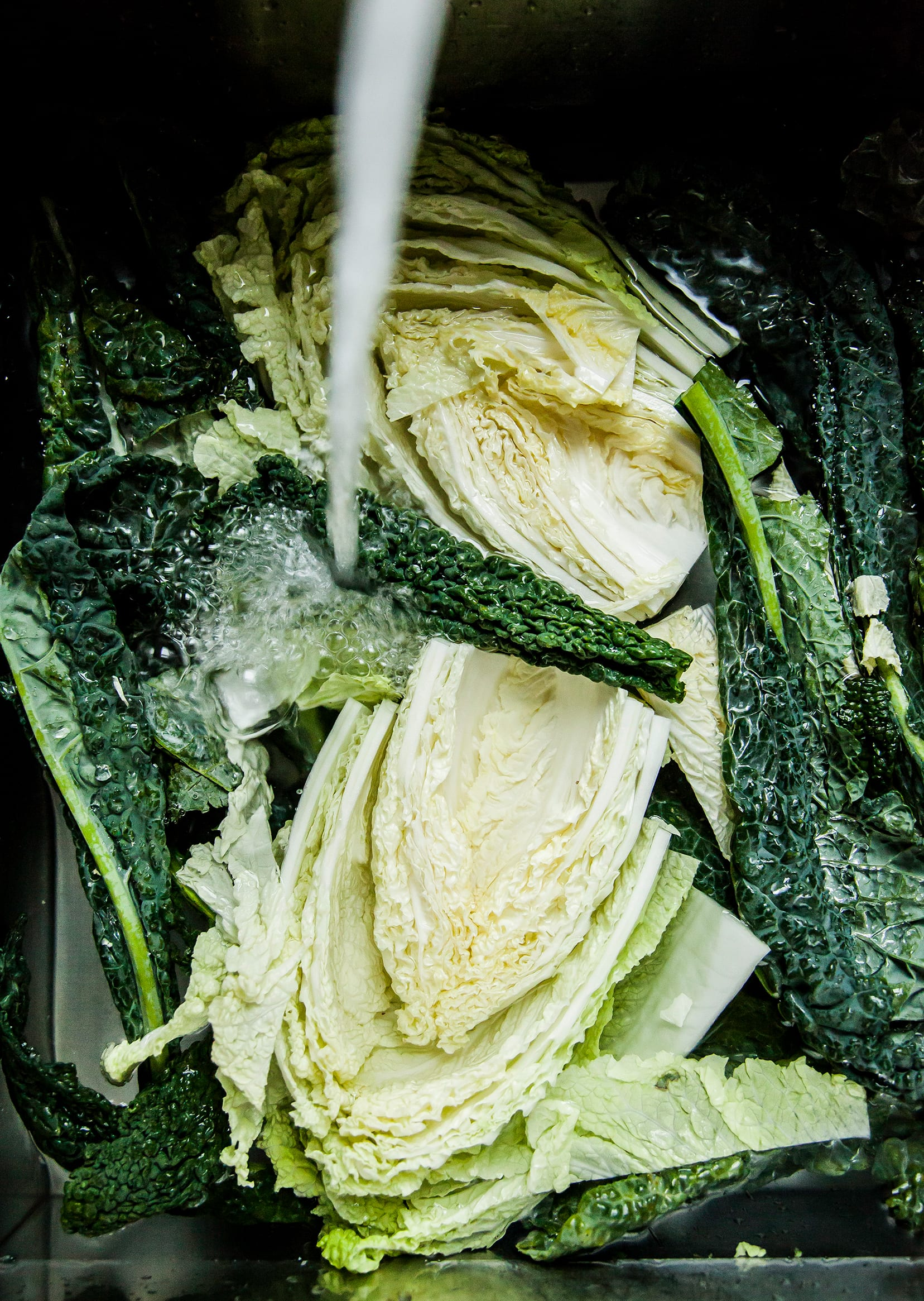 Image shows Napa cabbage and kale being washed in a sink.