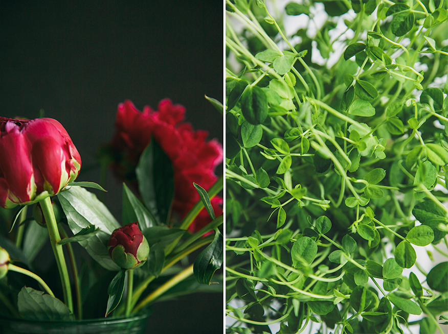 peonies + pea shoots // the first mess