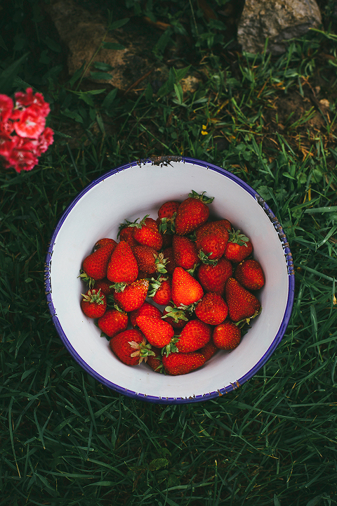 strawberries // thefirstmess.com