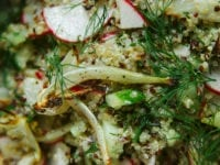 Roasted Fennel & Quinoa Crunch Salad - The First Mess