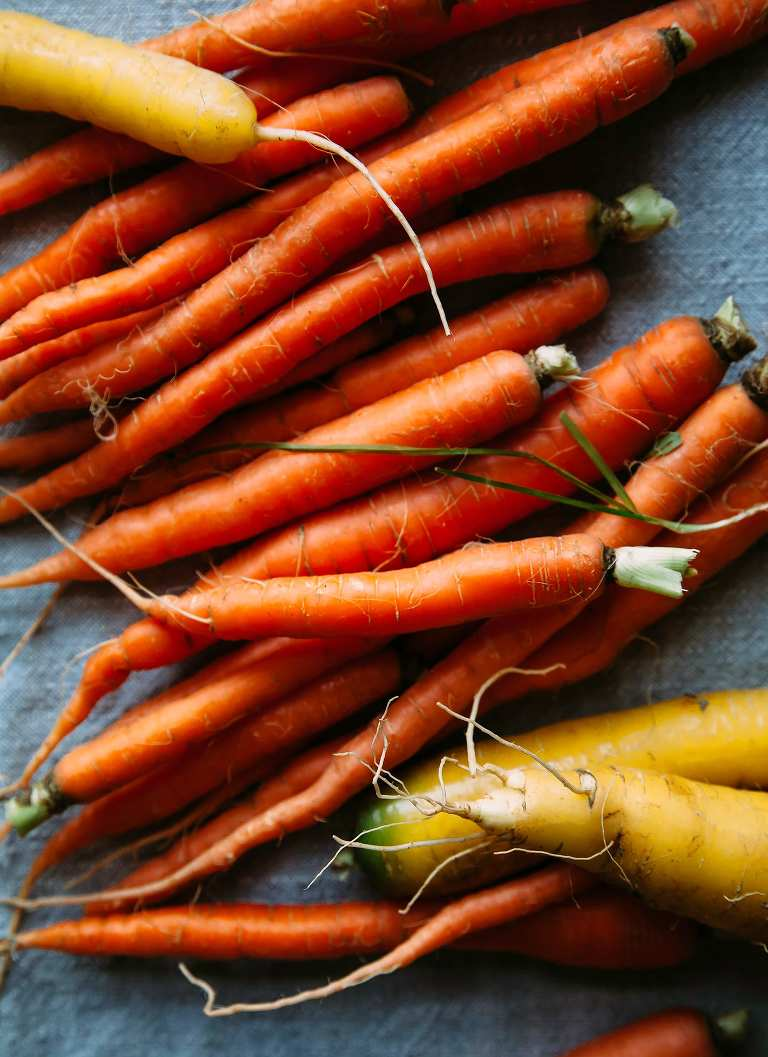 carrots - The First Mess